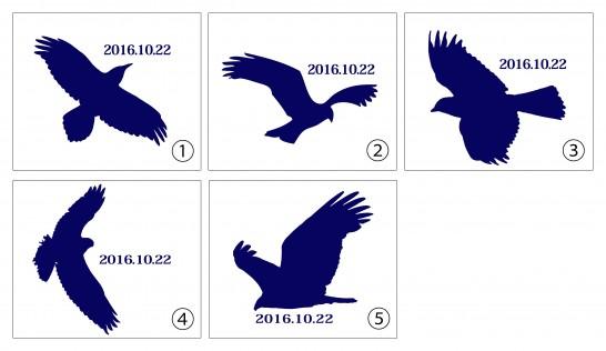 田川高校36回生総会用ユニフォーム・鷹のデザイン