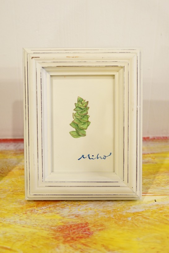 Plante grasse (連作) 田川高校36回生-2