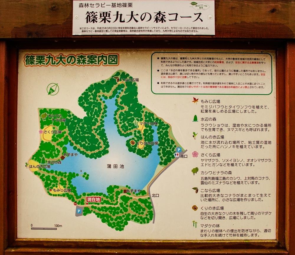 篠栗町九大の森コース